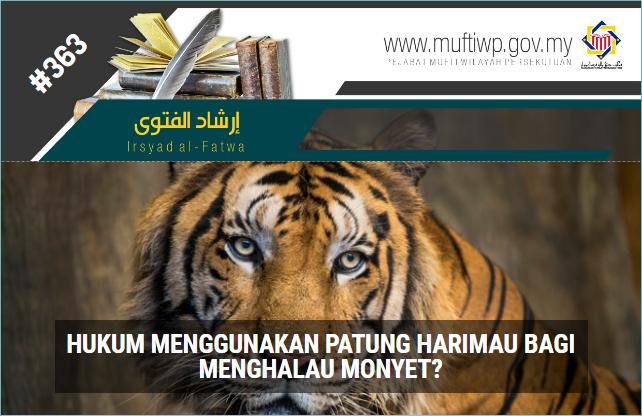 IF 363 harimau