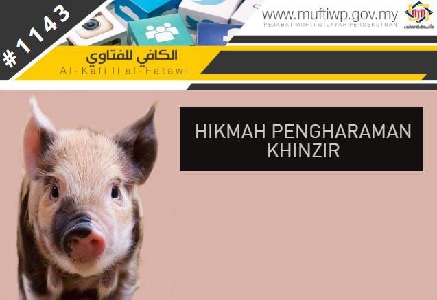 babi haram.JPG